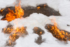 Fiery flame on the white snow in winter Stock Photography