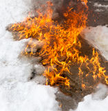 Fiery flame on the white snow in winter Stock Images