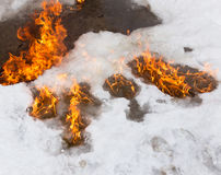 Fiery flame on the white snow in winter Stock Image