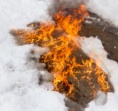 Fiery flame on the white snow in winter Royalty Free Stock Images