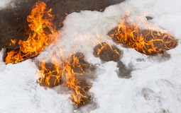 Fiery flame on the white snow in winter Royalty Free Stock Photo