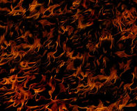 Fiery Flames. Flickering hot flames on a dark background Stock Images