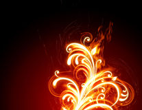 Fiery flower. S on a red background Royalty Free Stock Photo