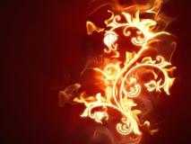 Fiery flower Stock Image