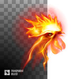 Fiery Golden Rooster Stock Image