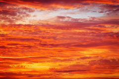 Fiery orange sunset sky. Stock Image