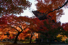Fiery red autumn maples and a traditional Japanese pagoda in Kyoto, Japan Stock Photo