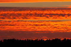 Fiery red sunset clouds Royalty Free Stock Images