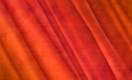 Fiery red velvet. Textured red folds of fabric stock image