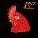 Fiery Rooster. Symbol of the coming year. Cock head. Vector illustration on black background Royalty Free Stock Photo