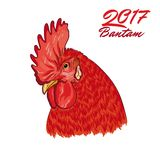 Fiery Rooster. Symbol of the coming year. Cock head. Vector illustration on white background Stock Photo