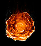 Fiery rose silhouette. Fiery bud of rose silhouette on black background Stock Photography