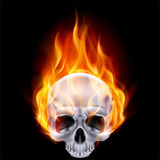 Fiery skull. Illustration of chrome fiery skull on black background Stock Photos