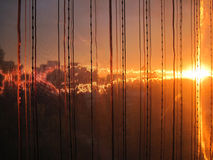 Fiery sunset. Look throught the curtain Stock Image