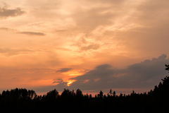 Fiery sunset and silhouette forest Royalty Free Stock Photography