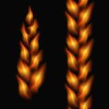 Fiery tresses Royalty Free Stock Photos