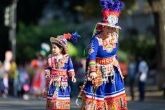 The Fiesta DC Parade royalty free stock photo