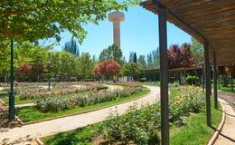 Fiesta del Arbol park in Albacete Spanje stock foto's