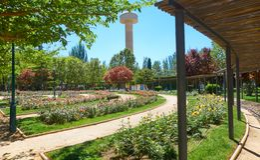 Fiesta Del Arbol park w Albacete Hiszpania zdjęcia stock