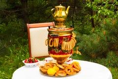 Fiesta del té de la primavera en el jardín, en una tabla cubierta con un blanco Imágenes de archivo libres de regalías