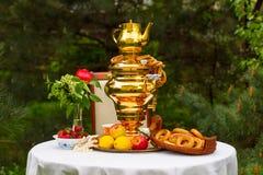 Fiesta del té de la primavera en el jardín, en una tabla cubierta con un blanco Foto de archivo libre de regalías