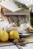 Fiesta del té del jardín Foto de archivo libre de regalías