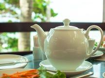 Fiesta del té en la naturaleza Fotos de archivo libres de regalías