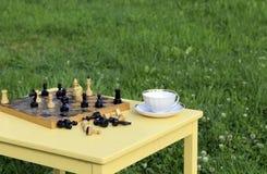 Fiesta del té en la naturaleza El juego del ajedrez al aire libre fotografía de archivo libre de regalías