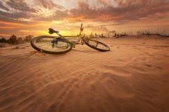 Fiets in de woestijn royalty-vrije stock foto