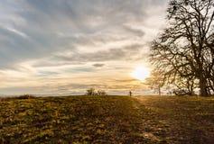 Fiets die op een Beboste Heuvel van Sparcely berijden royalty-vrije stock foto