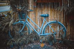 Fiets en bamboeachtergrond stock foto