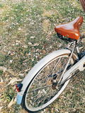 fiets en tuin Royalty-vrije Stock Foto's