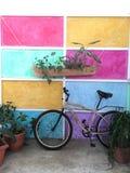 Fiets in in koffie naast geschilderde muur Royalty-vrije Stock Foto's
