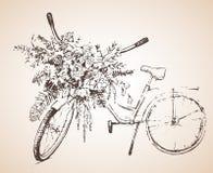 Fiets met grote bos van bloemen schets Stock Afbeeldingen