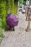 Fiets met purpere paraplu Stock Foto