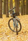 Fiets op de herfstweg Stock Foto