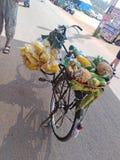 Fiets verkopend voedsel op Woensdagvlooienmarkt in Anjuna, Goa, India royalty-vrije stock foto's