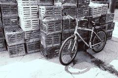 Fiets Zwarte & Witte Dokken Stock Afbeelding