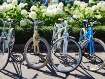 Fietsen bij de parade` Dames op fietsen Stock Afbeeldingen