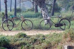 Fietsen in platteland Stock Fotografie