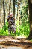 Fietser in bos Stock Afbeeldingen