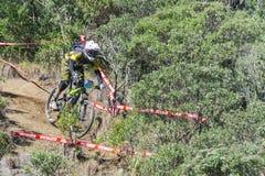 Fietser in de concurrentie van de bergfiets Stock Afbeeldingen