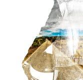 Fietser en landweg op witte achtergrond royalty-vrije stock afbeeldingen