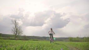 Fietser-meisje bij de zonsondergang op de weide Kind die van vrijheid op fiets op tarwegebied genieten bij zonsondergang Meisje o stock videobeelden