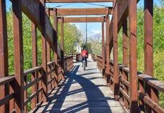 fietser met helm die zijn bergfiets berijdt die een houten bruine brug in een zonnige dag kruist De ruiter draagt een zoeter rood royalty-vrije stock foto