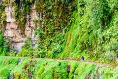 Fietser op de doodsweg in Yungas van Bolivië Royalty-vrije Stock Afbeelding