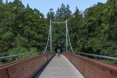 Fietser op de kabelbrug - groene bos en blauwe hemel stock afbeeldingen
