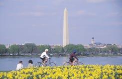Fietsers bij Dame Bird Park, de Potomac Rivier, Washington, D C Stock Foto