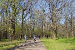 Fietsers in het park royalty-vrije stock afbeeldingen