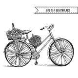 Fietshand getrokken vectorschets, de oude fiets van de inktillustratie met bloemenmand op witte achtergrond, wijnoogst vector illustratie